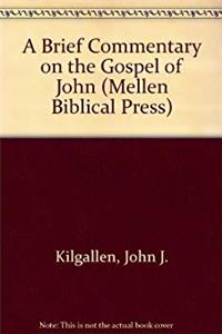 A Brief Commentary on the Gospel of John (Mellen Biblical Press) download epub