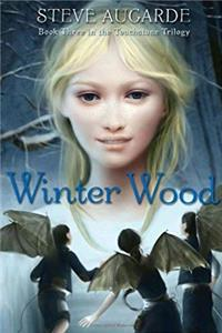 Winter Wood: Book 3 in the Touchstone Trilogy download epub