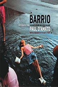 Barrio: Photographs from Chicago's Pilsen and Little Village (Chicago Visions and Revisions) download epub