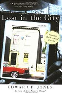 Lost in the City download epub