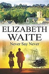 Never Say Never (Severn House Large Print) download epub